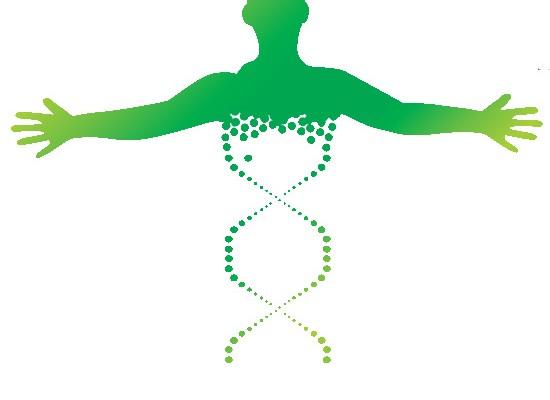 the organism associazione